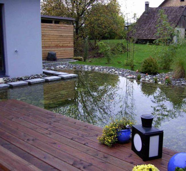 teiche zum schwimmen teiche f r ihre kois teiche zum anschauen und meditieren wiggenhauser. Black Bedroom Furniture Sets. Home Design Ideas